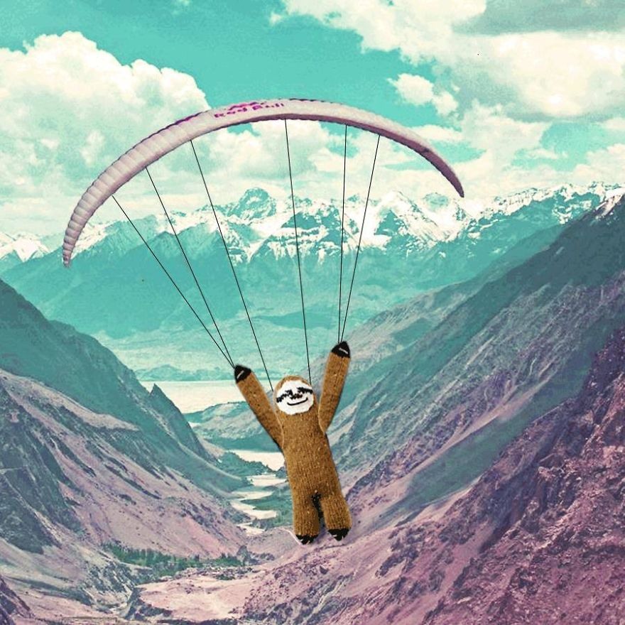 Meet-Super-Sloth-A-Woolen-Cape-Wearing-World-Travelling-Sloth.__880