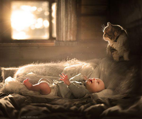 adorable-kids-with-their-cats-20-photos-11