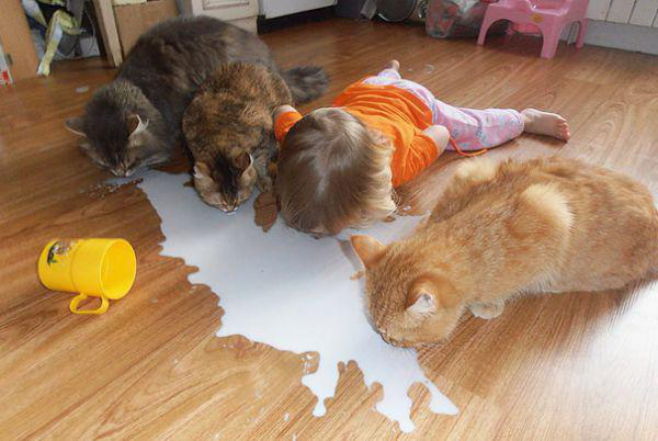 adorable-kids-with-their-cats-20-photos-12