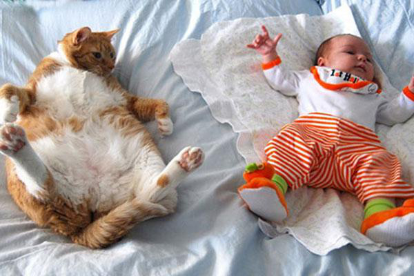 adorable-kids-with-their-cats-20-photos-201