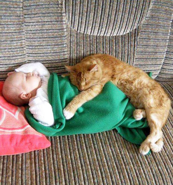 adorable-kids-with-their-cats-20-photos-5