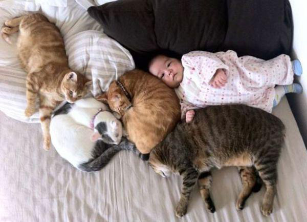 adorable-kids-with-their-cats-20-photos-9