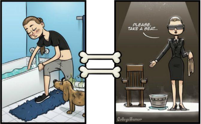 dogvisionbathfeat