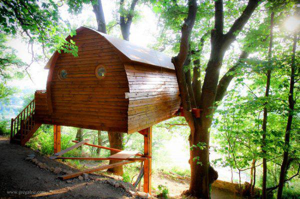 incredible-tree-houses-treehouses-12