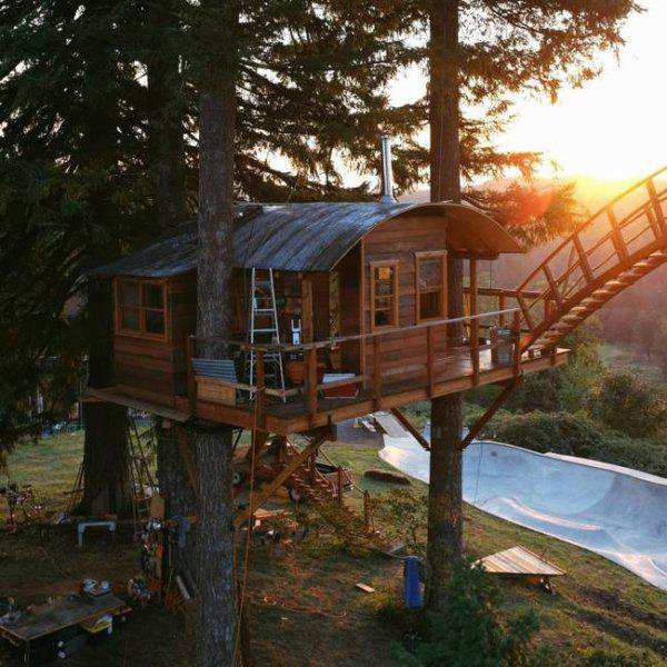incredible-tree-houses-treehouses-17