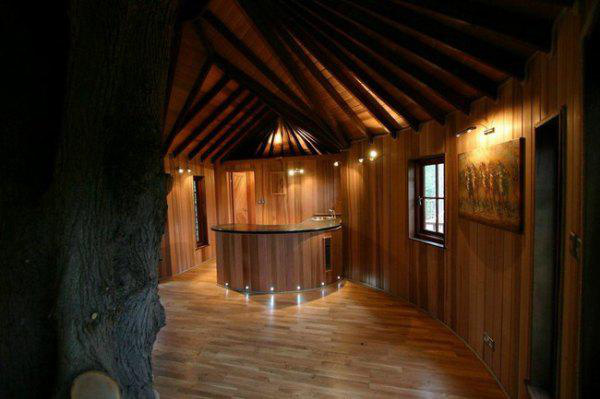incredible-tree-houses-treehouses-19