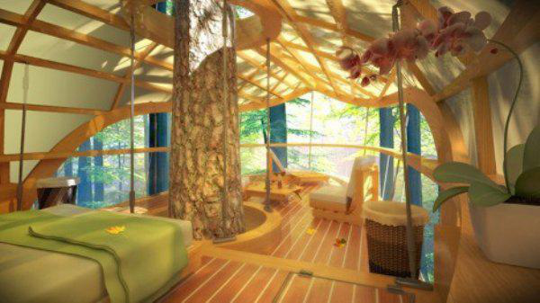 incredible-tree-houses-treehouses-22