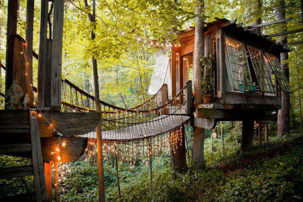incredible-tree-houses-treehouses-3