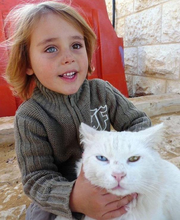 israeli-boy-cat__605