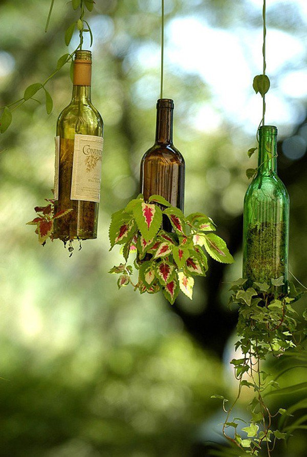 33-DIY-Wine-Bottle-Hanging-Planters-600x892