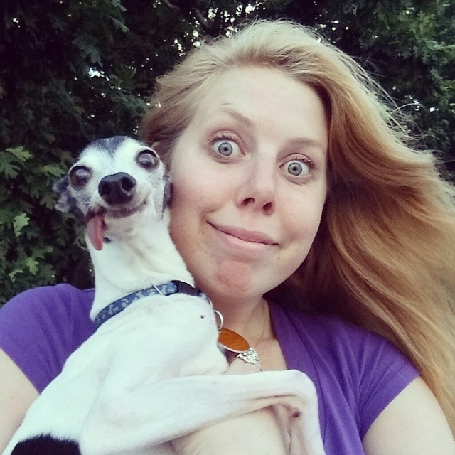 derpy-dog-greyhound-sticking-tongue-zappa-171