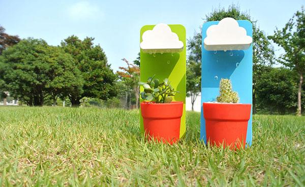 Rainy-pot-6
