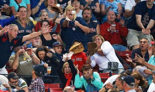 nicely_timed_sports_photos_public_at_baseball_game_catching_the_ball