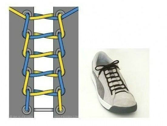 ways_to_tie_shoes_single_line