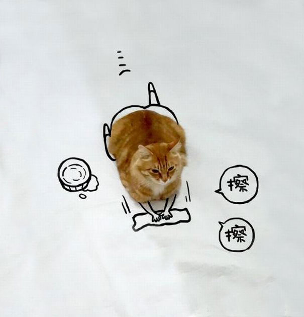 Amazing-how-imaginative-people-are-when-it-comes-to-doodling-over-a-cat61