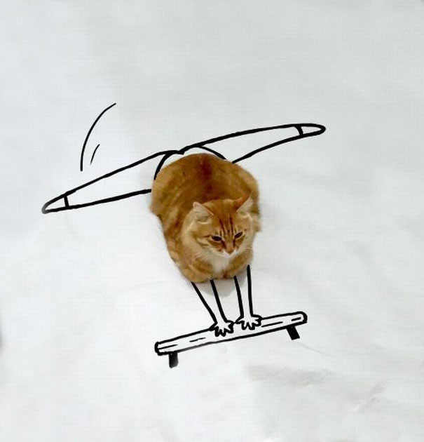 Amazing-how-imaginative-people-are-when-it-comes-to-doodling-over-a-cat7