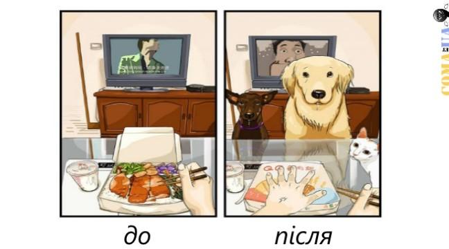 Як змінюється життя, коли у домі з'являється пес