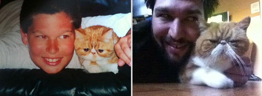 cute-pets-before-after-angry-cat