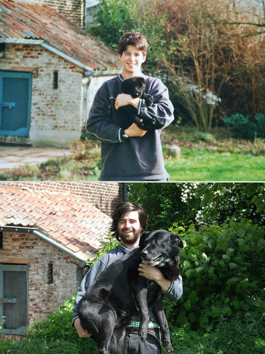 cute-pets-before-after-forest