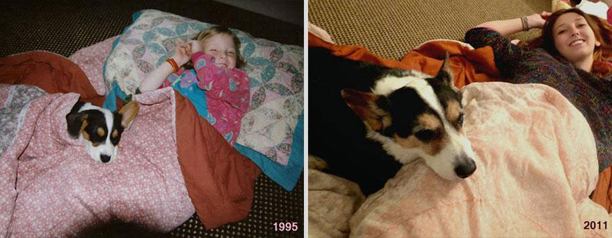 cute-pets-before-after-sleepover