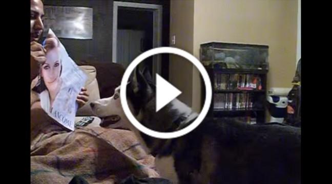 Пес боїться Джулії Робертс