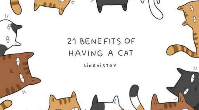 21 факт, який доводить, що коти – це класно!