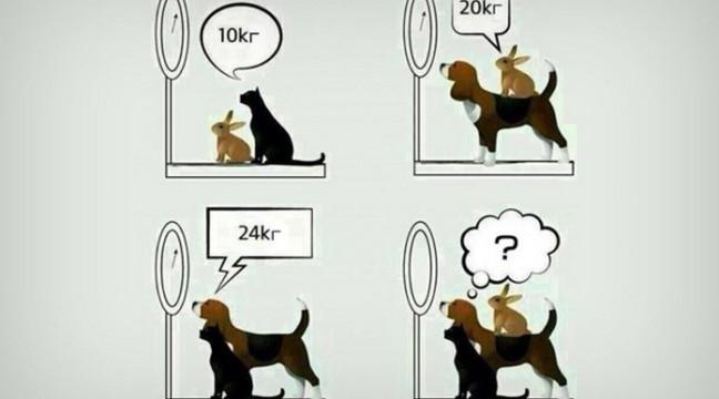 Загадка з математики для учнів 4 класу