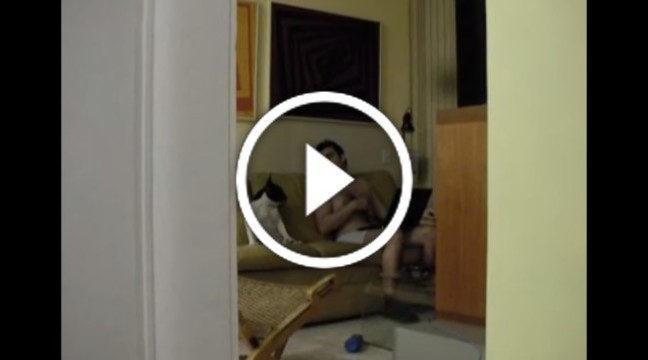 Чоловік і собака не знали, що їх знімають на відео. Що витворяють!