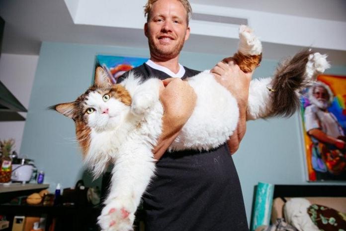 13 кілограм щастя. Кіт Самсон досяг рекордних розмірів і став найбільшим котом Нью-Йорка