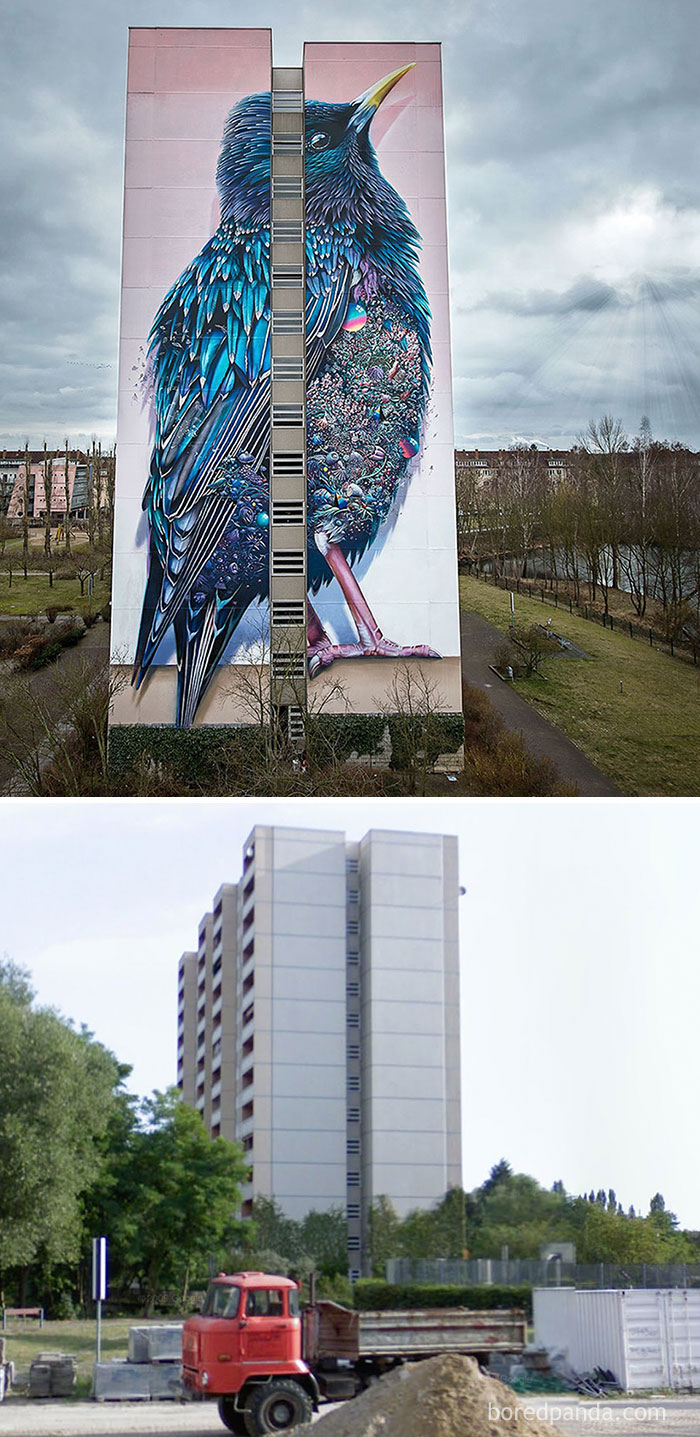 before-after-street-art-boring-wall-transformation-2-580df352b1353__700
