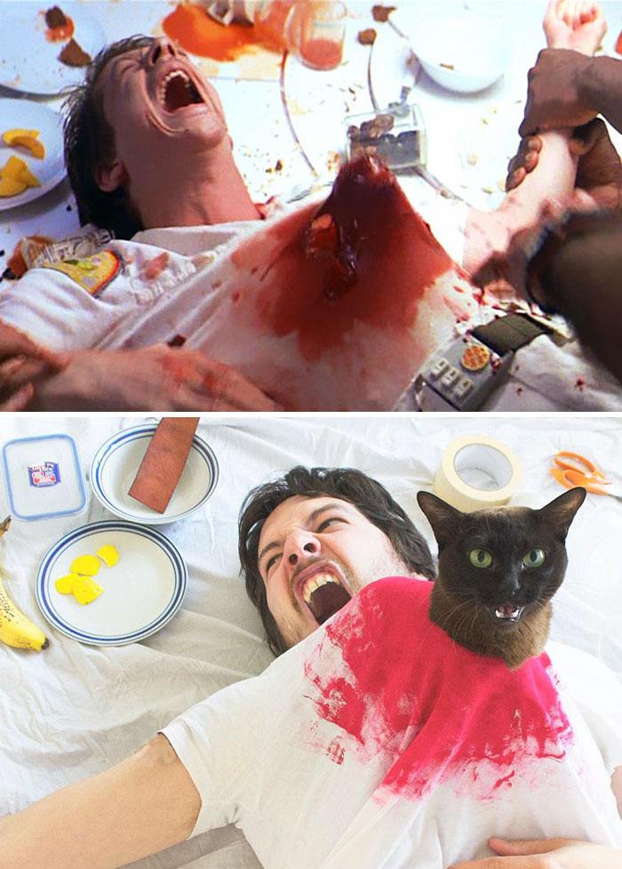 movie-cats-recreate-famous-movie-scenes-1-5833fcdd61693__700