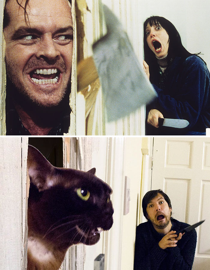movie-cats-recreate-famous-movie-scenes-2-5833fce07a084__700