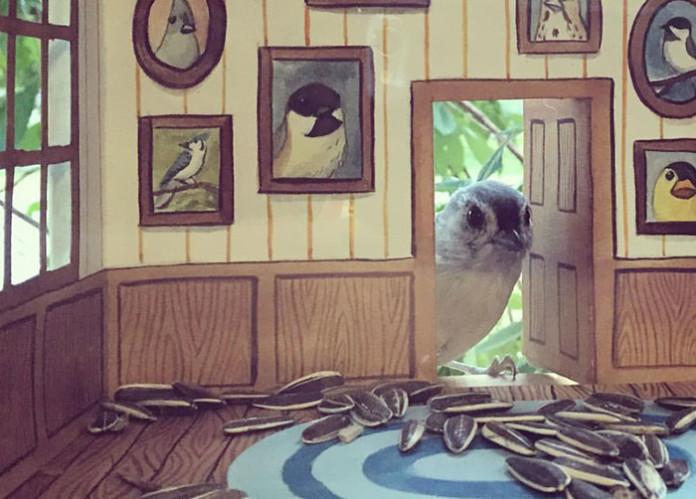 Жінка майструє крихітні будиночки для пташечок, які щодня залітають до неї