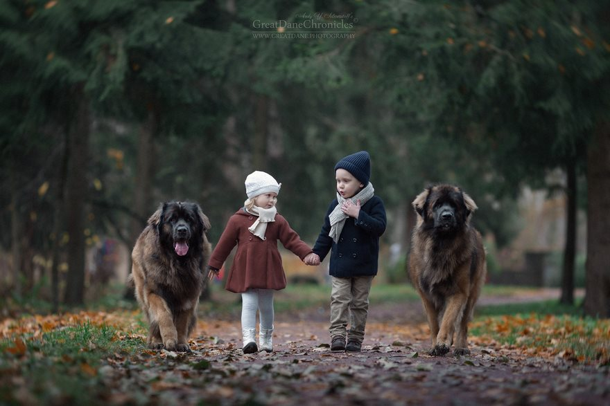 little-kids-big-dogs-photography-andy-seliverstoff-23-584fa92aa10d2__880