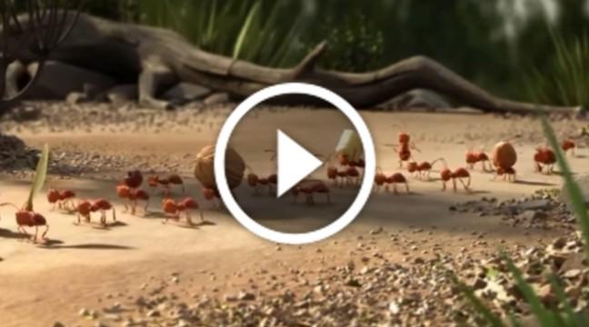 """""""Разом – сила"""" — повчальний короткометражний мультик від Pixar"""