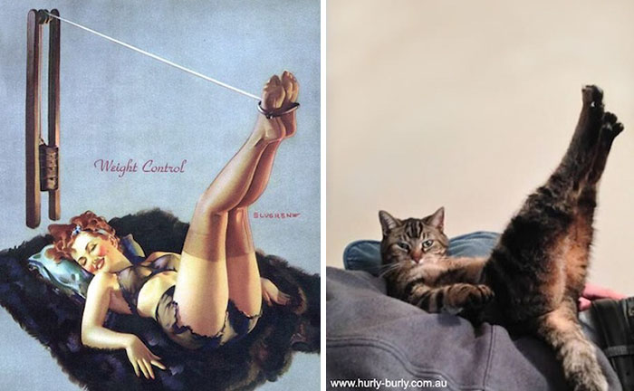 cats-vintage-pin-up-girls-25-586666fa79626__700