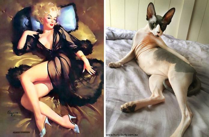 Коти проти Пін-ап дівчат. Хто крутіший?
