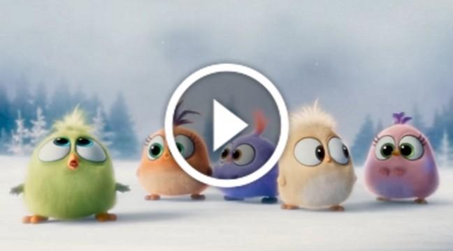 Злі пташки вітають вас з Різдвяними святами!
