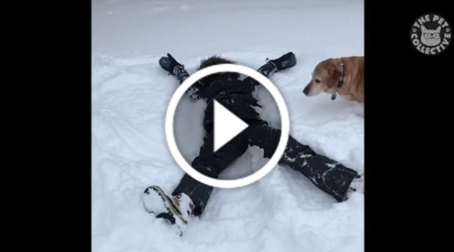 """Жінка лягла на сніг, щоб зробити """"ангела"""". Погляньте, як відреагував пес"""