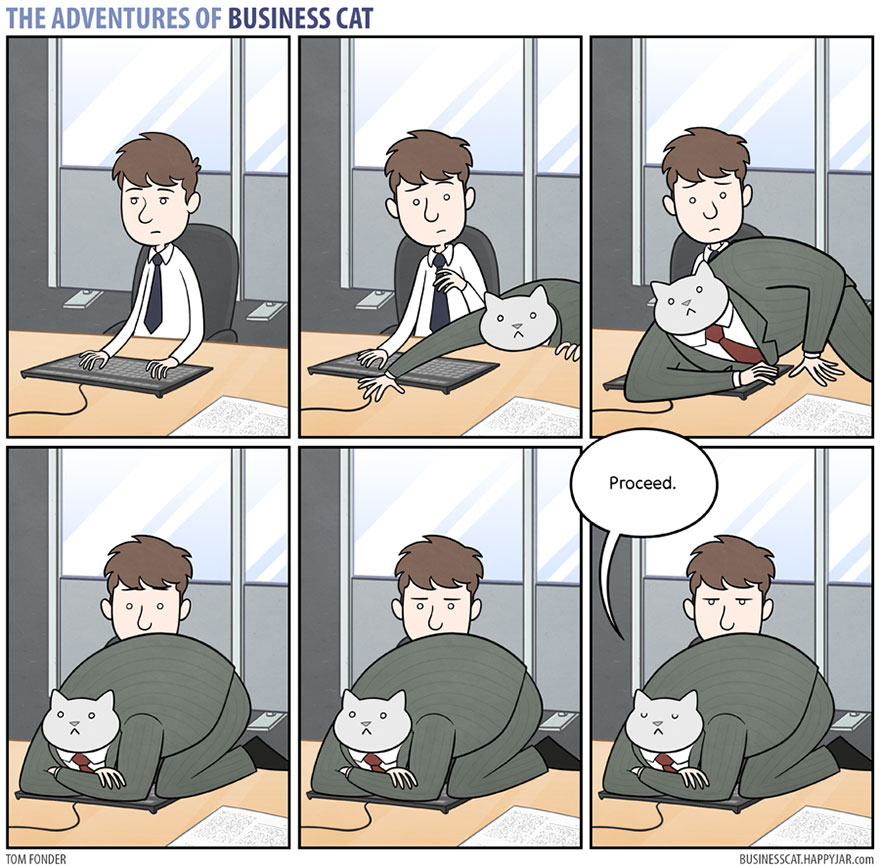 adventures-of-business-cat-comics-tom-fonder-16-58cbae3c8b97b__880