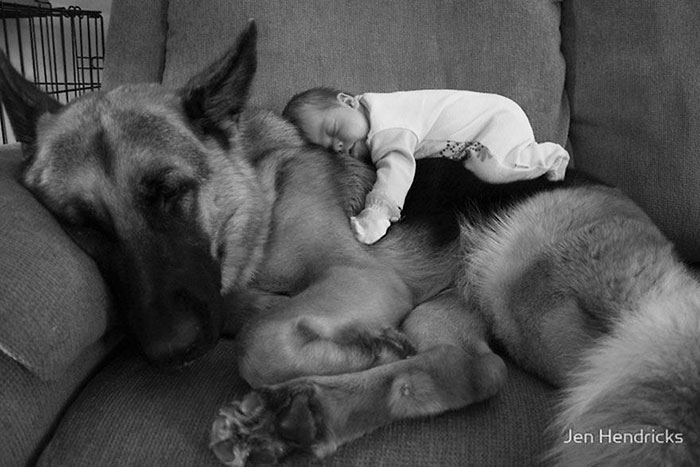kids-dogs-sleeping-together-napping-buddies-123-58d9138b0b9fb__700