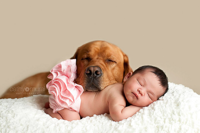 kids-dogs-sleeping-together-napping-buddies-131-58d91d46182db__700