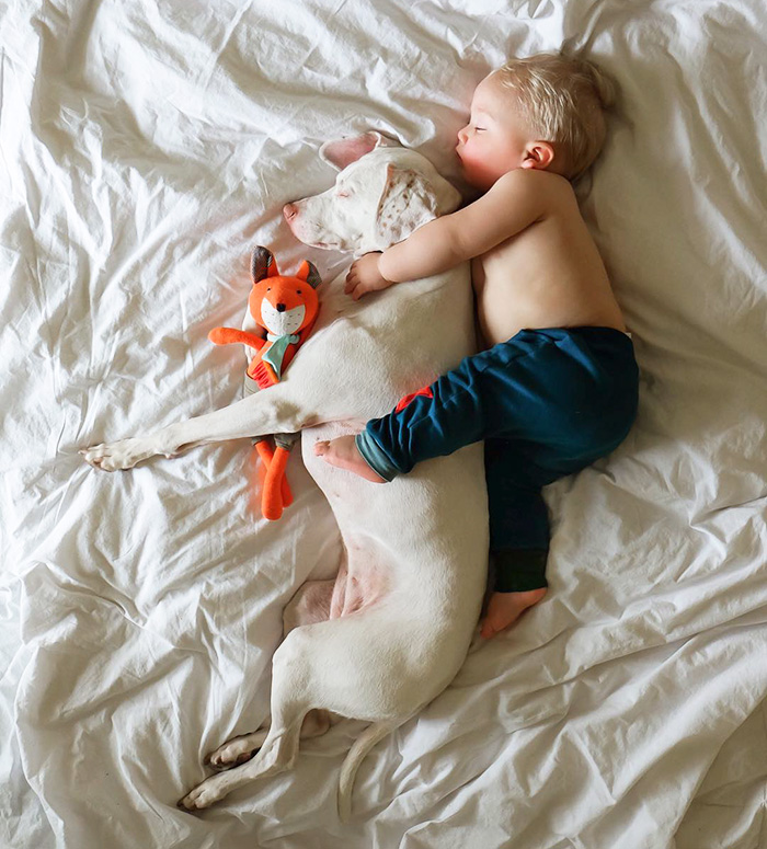 kids-dogs-sleeping-together-napping-buddies-136-58d92419f0358__700