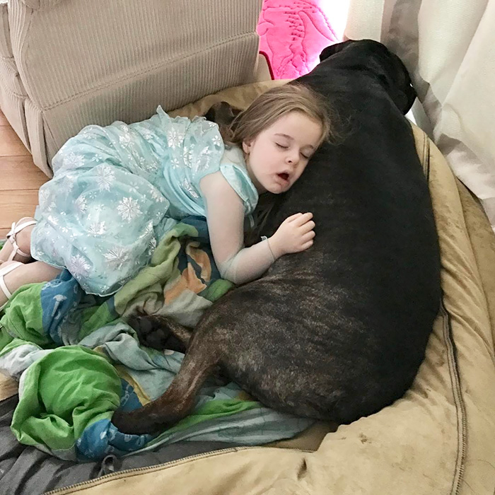 kids-dogs-sleeping-together-napping-buddies-209-58dcc055aea90__700