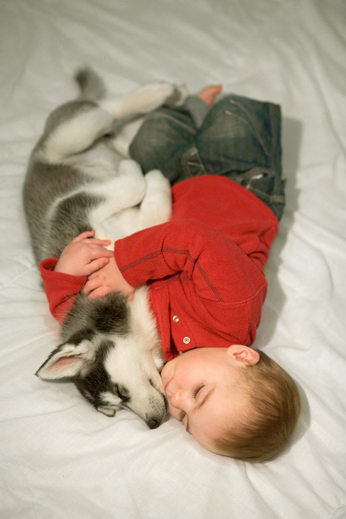 kids-dogs-sleeping-together-napping-buddies-58d8f97283e5f__700
