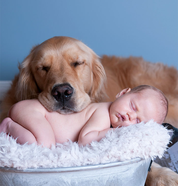 kids-dogs-sleeping-together-napping-buddies-58d8fe3407c5a__700
