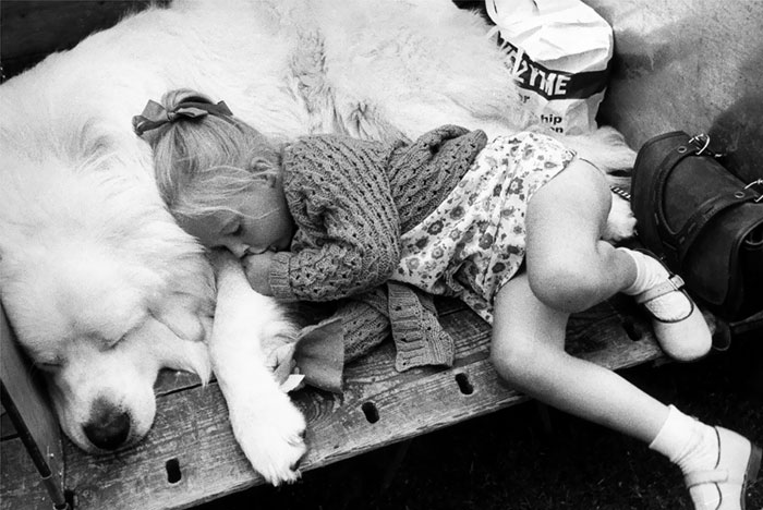 kids-dogs-sleeping-together-napping-buddies-58d90825c2d6c__700