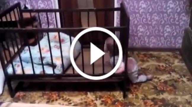 Винахідливості цього малюка можна тільки позаздрити