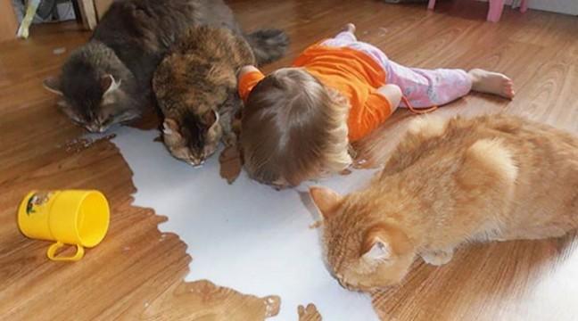 10 причин не залишати дітей наодинці з тваринами
