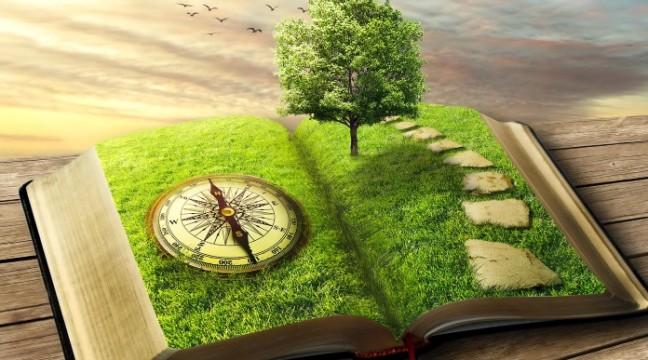 Друге дихання: 10 книг для внутрішньої підзарядки